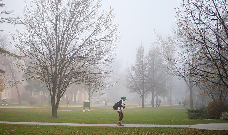 Lifting the fog about fog