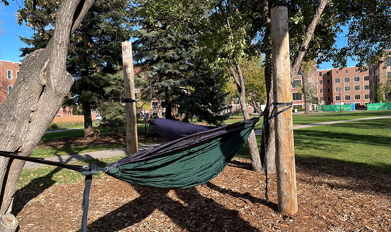 Flurry of activity by Facilities promotes student rest
